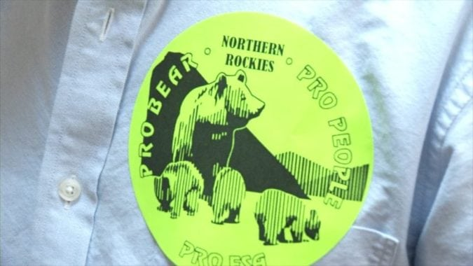 NCDE Grizzly Sticker