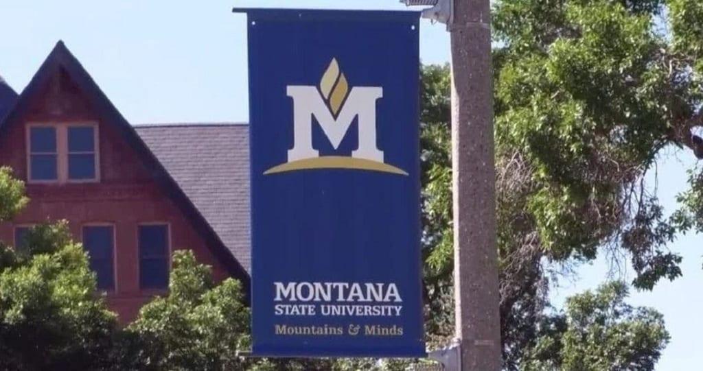 MSU Campus Bozeman