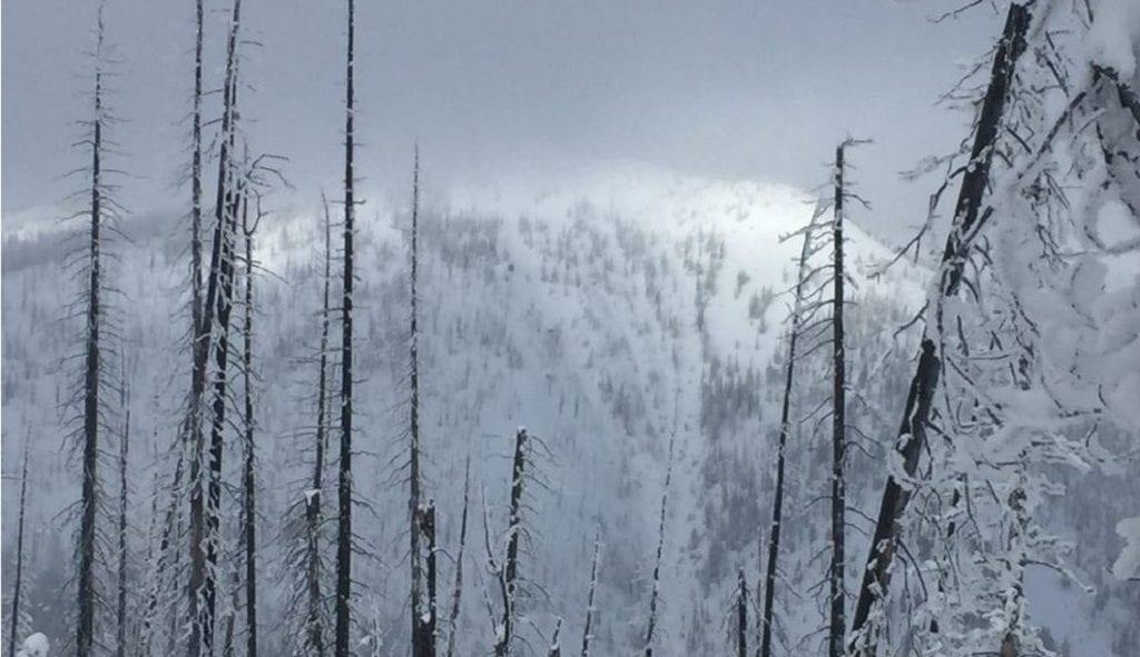 Avalanche Danger Saddle Peak