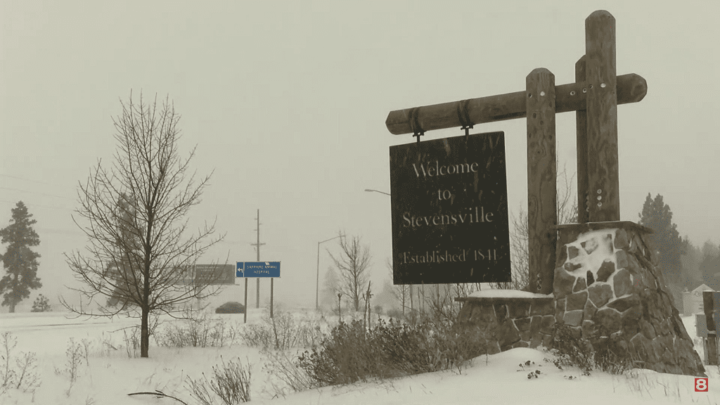 Snowy Stevensville