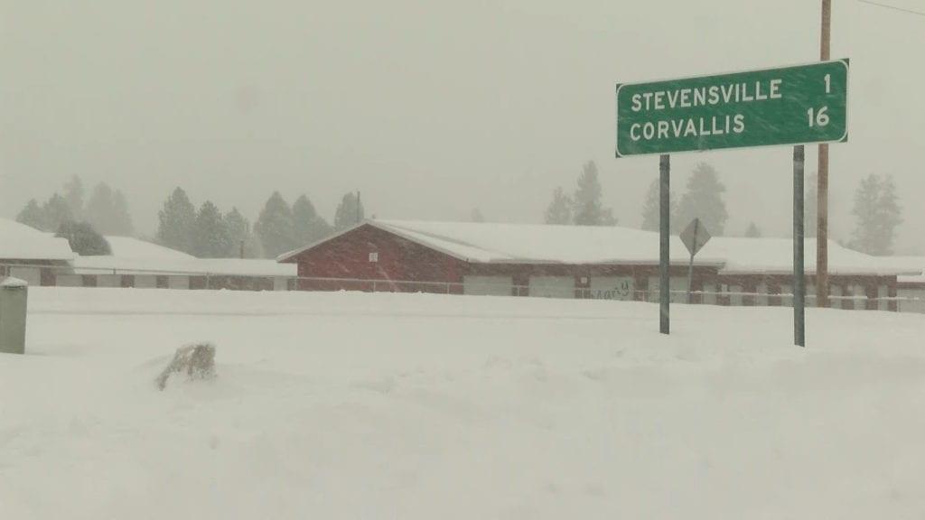 Bitterroot Snow