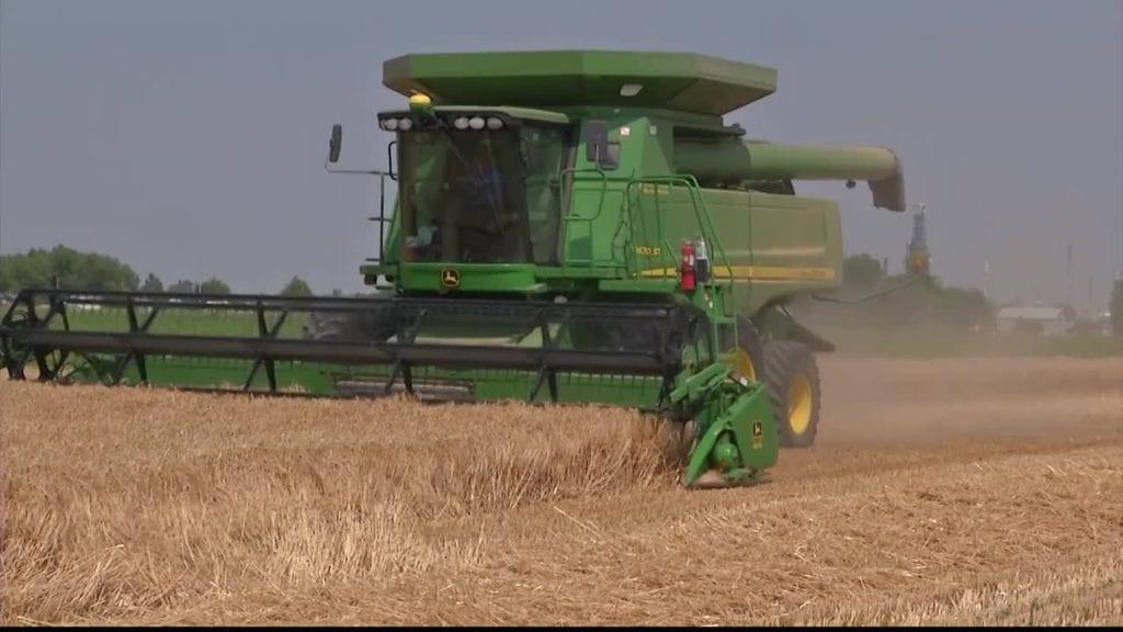 Barley Field Tractor