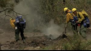 Firefighter Wildfire Prevention Training