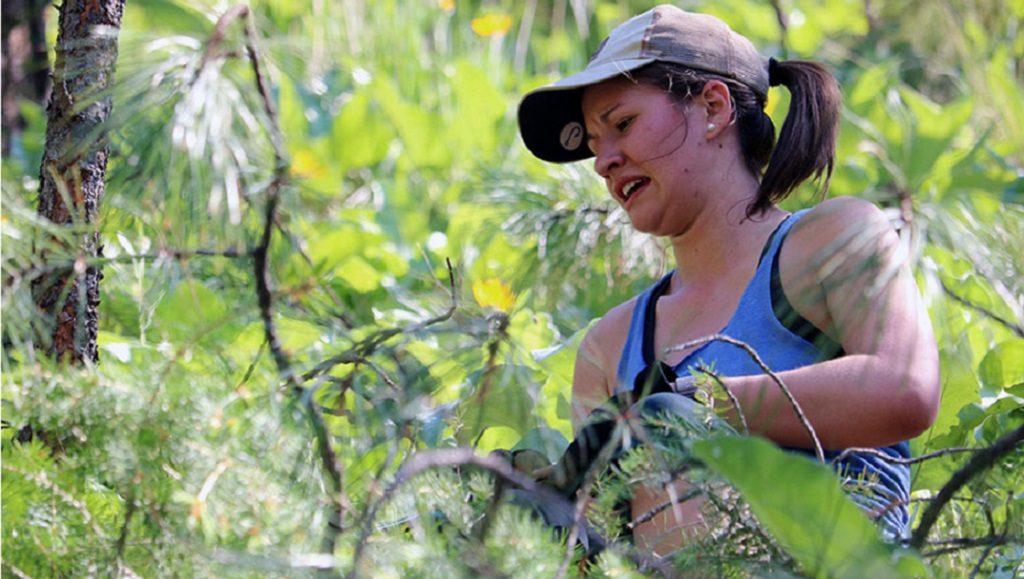 Nikki Stirling Conservation