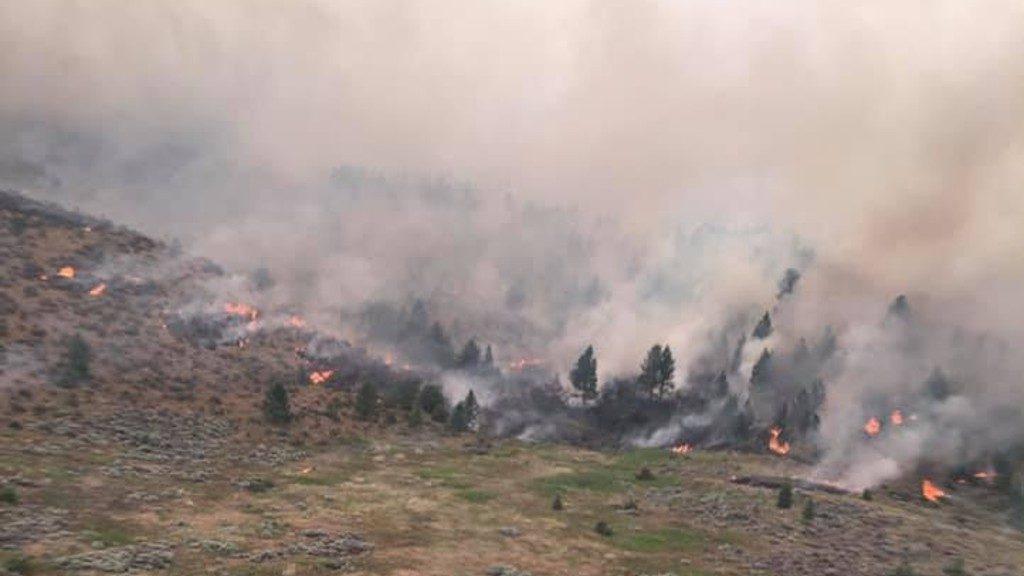 Moss Ranch Fire